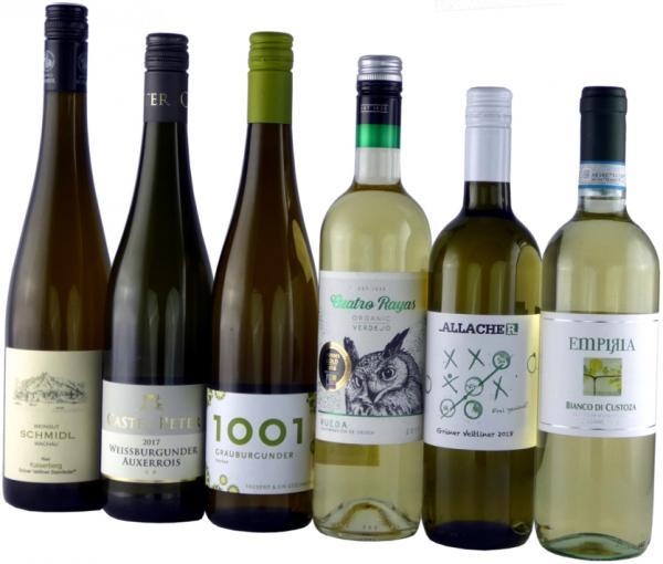 Beliebte leichte Weißweine/ Weinprobierpaket, Bio