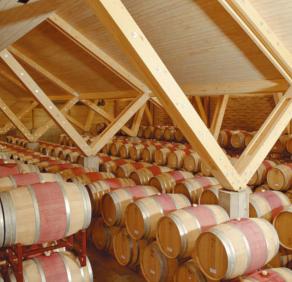 Coyam im Barrique-Weinlager