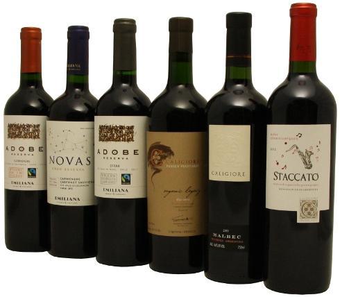 Beliebte Weine aus Chile und Argentinien / Vegane Rotweine