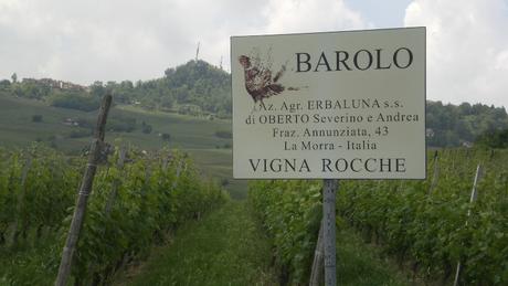Barolo Weingarten