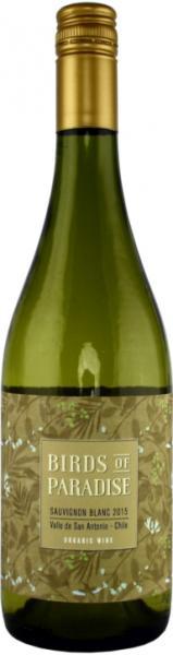 Chilenischer Weißwein Sauvignon Blanc