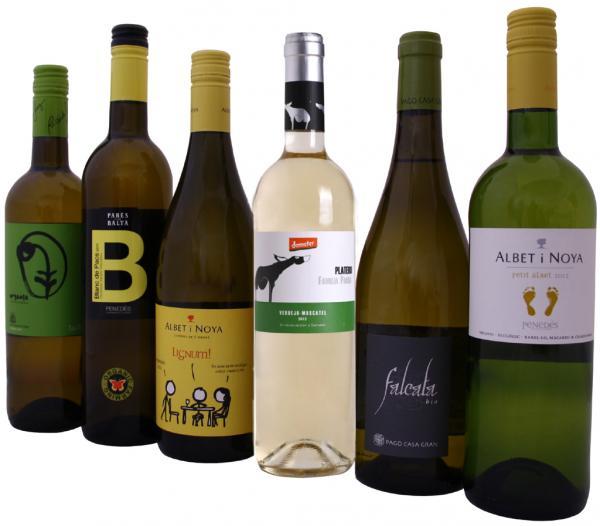 Beliebte Weißweine Spanien / Probierpaket Bioweine